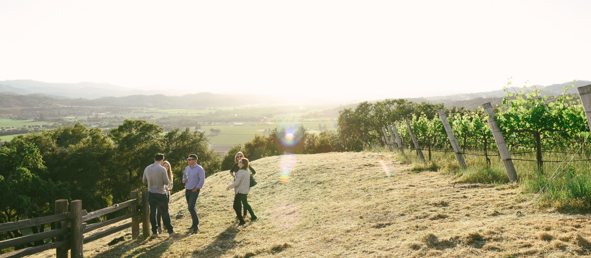 A group of friends overlook the Alexander Valley on a hilltop next to rows of lush green vines